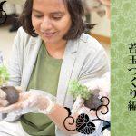 チャルの日本文化体験第2弾! ザ・日本 苔玉づくり編