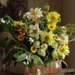 花で人を元気にする フラワーアーティストまきのせさん