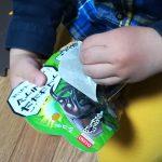 100円ショプのカブトムシ・クワガタのおもちゃがリアルで虫好きにオススメ